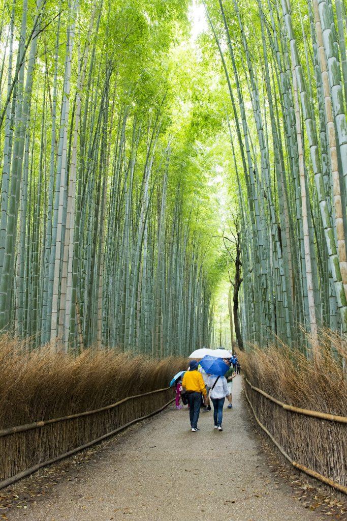 Viagem ao Japão: passagens promocionais e 3 lugares para visitar